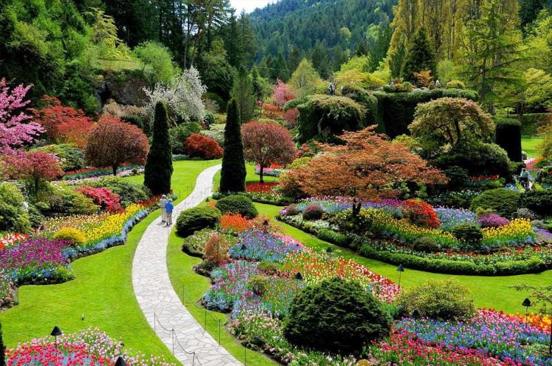Flora y flores en tu salud, en 'De camino por la vida'